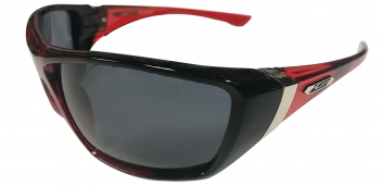 425726 Polarized CLOSEOUT